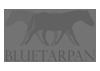 Bluetarpan - studio projektowania wnętrz